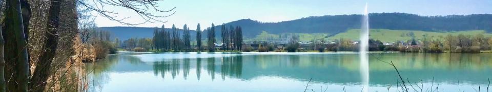 Le lac de Vesoul et sa zone de protection de la faune et de la flore